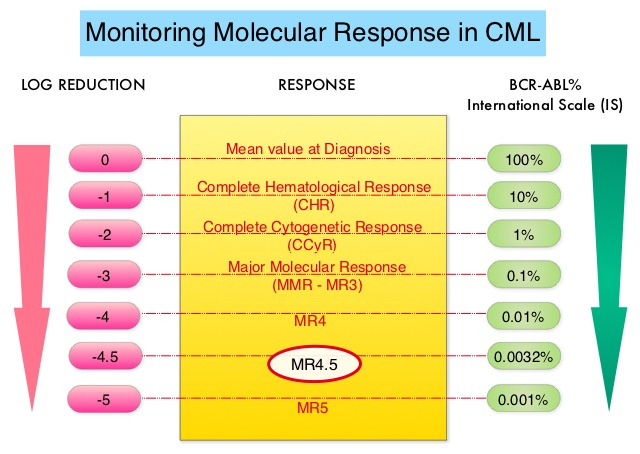 Monitoring MMR in CML