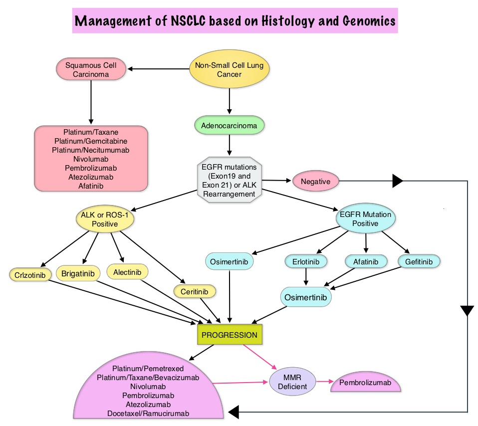 Management-of-NSCLC-based-on-Histology-and-Genomics