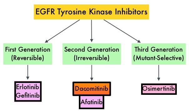 EGFR-Tyrosine-Kinase-Inhibitors