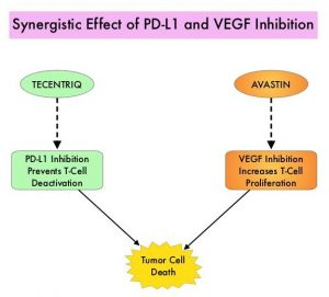 Synergistic-Effect-of-PD-L1-and-VEGF-Inhibition