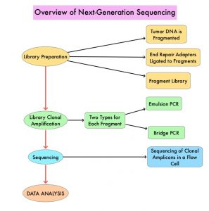 Overview-of-Next-Generation-Sequencing