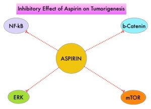 Inhibitory-Effect-of-Aspirin-on-Tumorigenesis